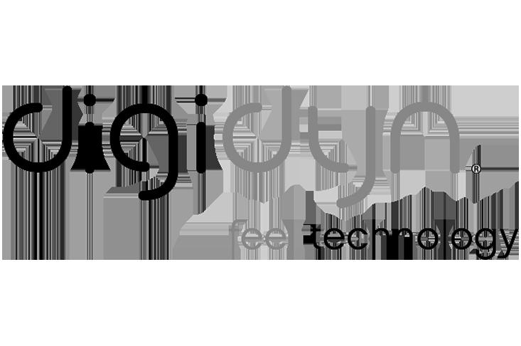 DIGIDYN_logo_01 copy