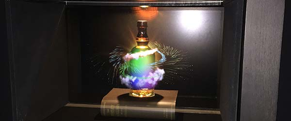 Holographic display to educate visitor